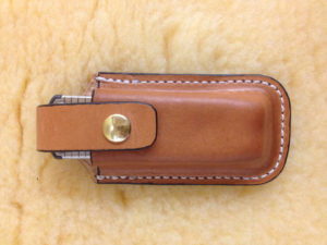 tool belt case