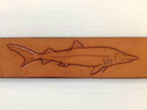 leather shark